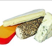 Picture Of Cheddar Blue Cheese Gorgonzola