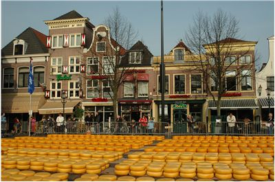 Picture Of Cheese For Cheese Market