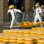 Picture Of Cheese For Market In Alkmaar