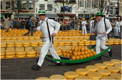 Picture Of Cheese In  Holland